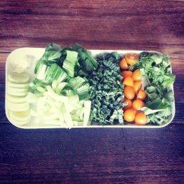 Green Soup ingredients: bok choy, kale, rocket, coriander, basil, leek, tomato, garlic, chicken