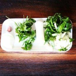 Soup ingredients: bok choy, leek, rocket, onion, garlic, chicken